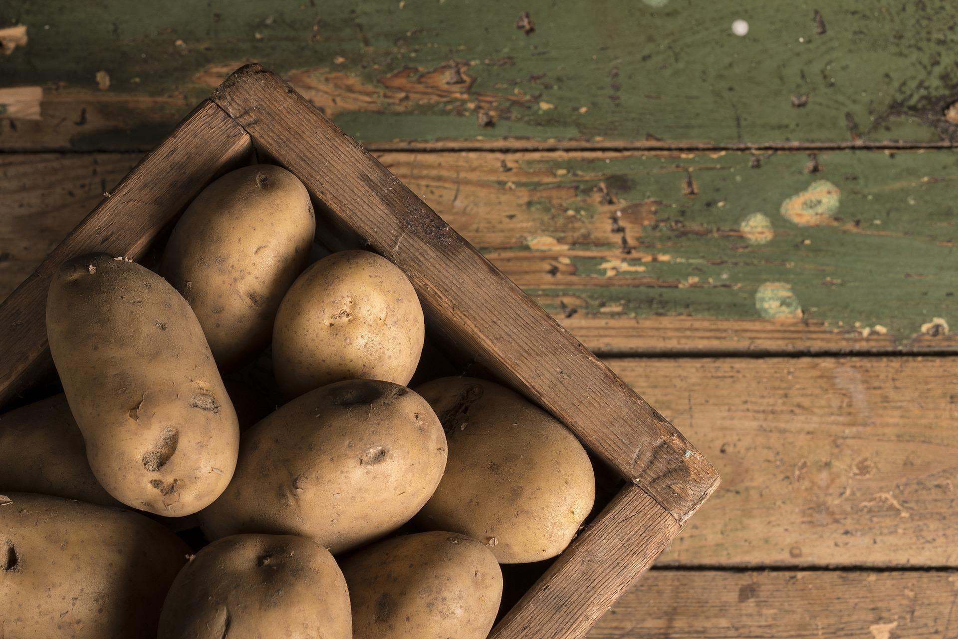 Amido di patate
