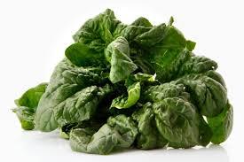 spinaci-ferro-ossalati