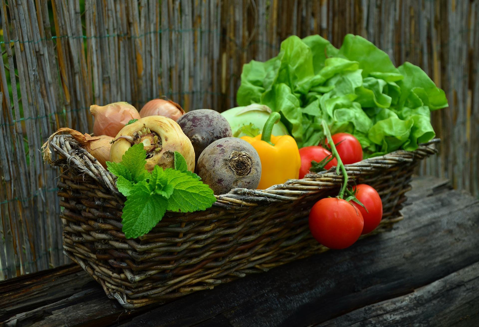 Alimentazione e microbiota
