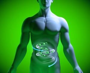disbiosi+probiotici
